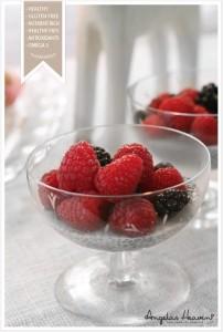 healthy-vanilla-chiapudding