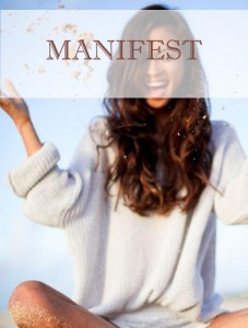 the-law-of-attraction-manifest
